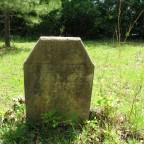 Endangered history in DeKalb